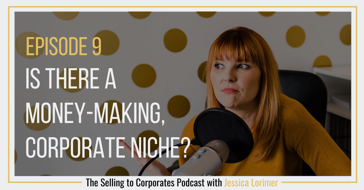 Episode 9: Is there a money-making, corporate niche?