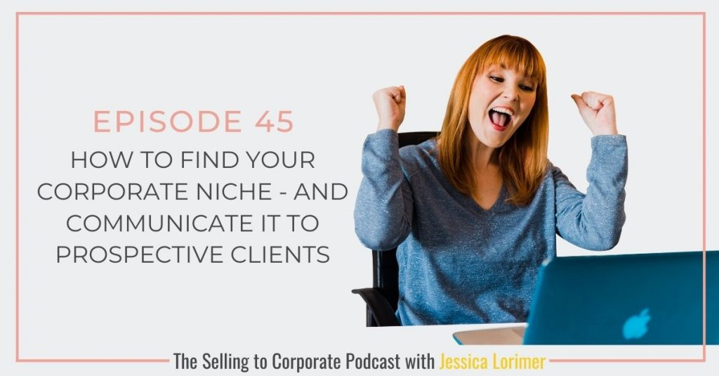 Selling To Corporates ® Podcast 045 How to find your corporate niche - and communicate it to prospective clients