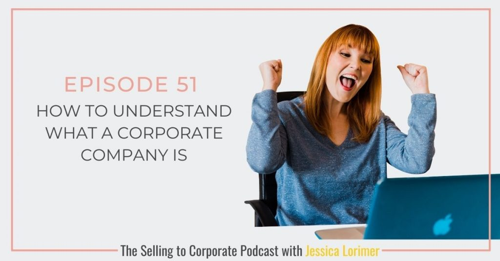 STC051 How to understand what a corporate company is